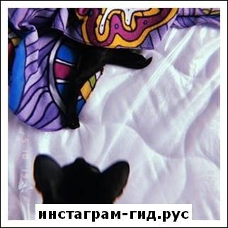 Кижнерова Светлана