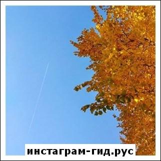 Май Абрикосов (Роман Тертишный)