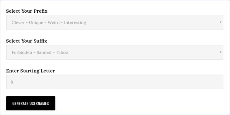 Поля для заполнения на сервисе Username Buddy для Инстаграм